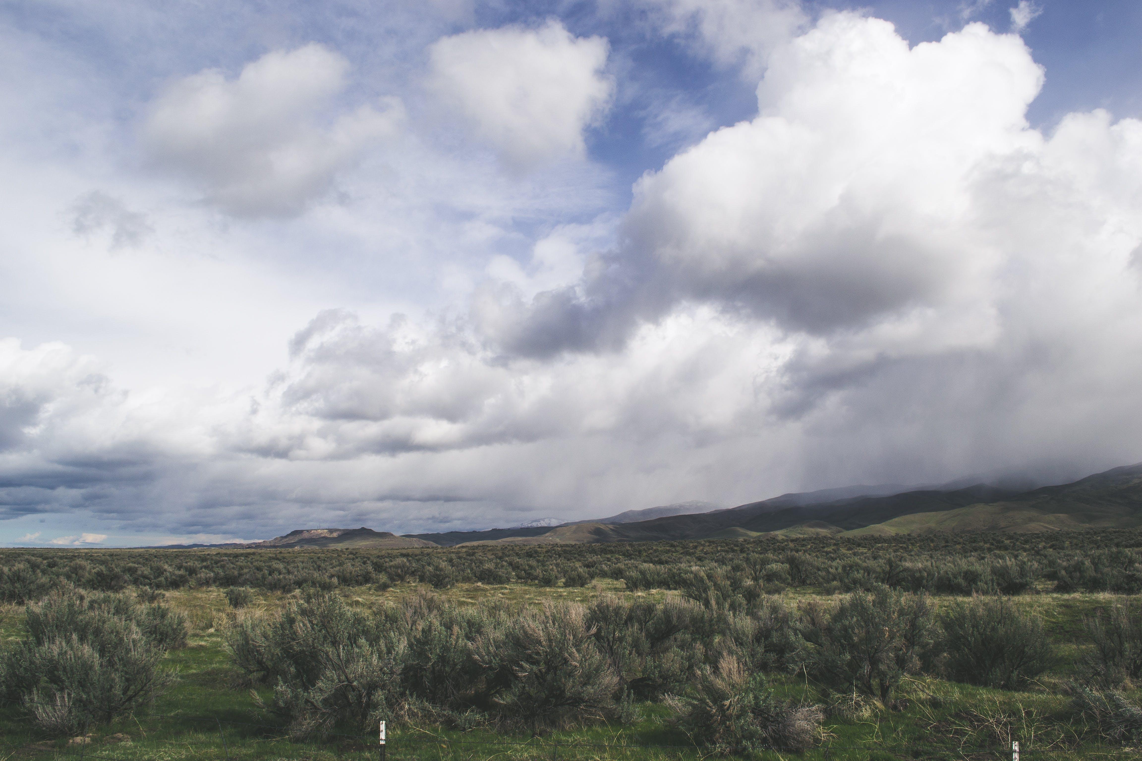 Ingyenes stockfotó farm, felhők, festői, füves terület témában