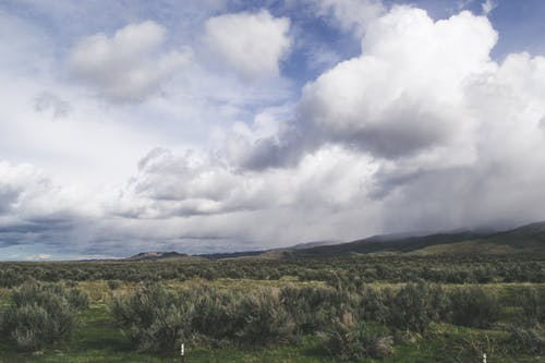 Foto d'estoc gratuïta de camp d'herba, cel blau, granja, núvols