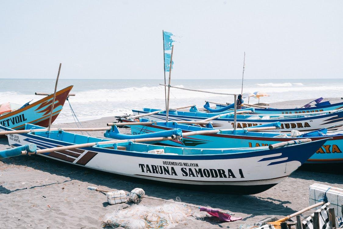 csónakok, halászhajók, háló