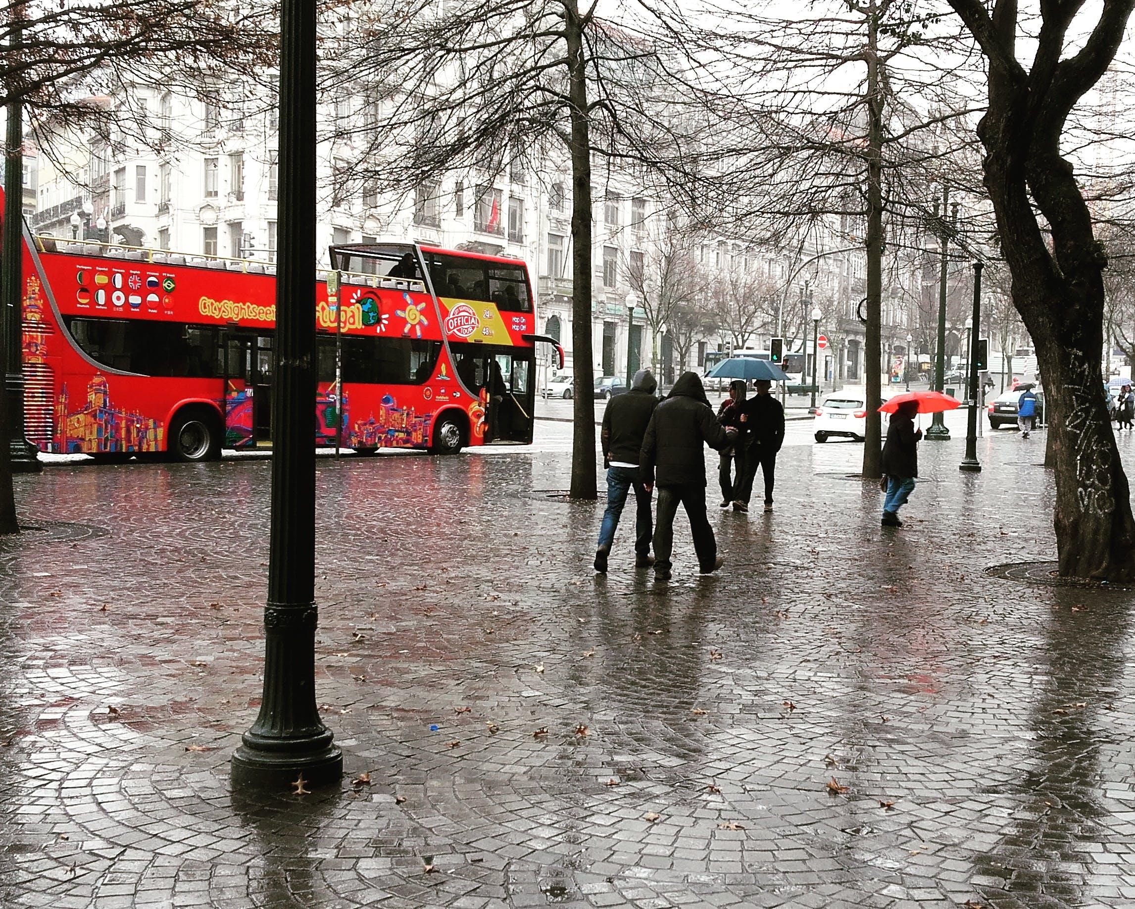 Free stock photo of grey, oporto, portugal, rain