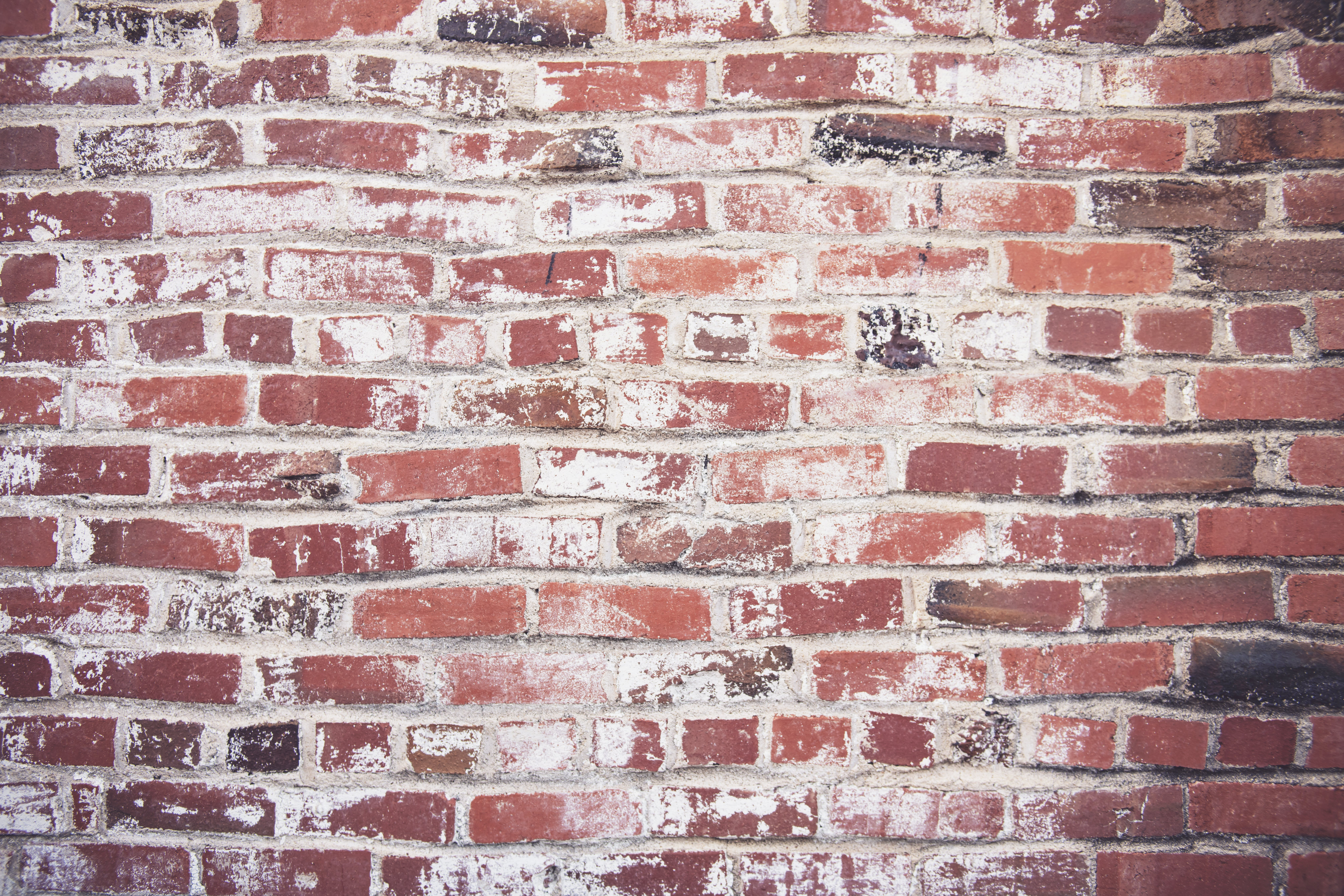 Photo of Red Brickwall