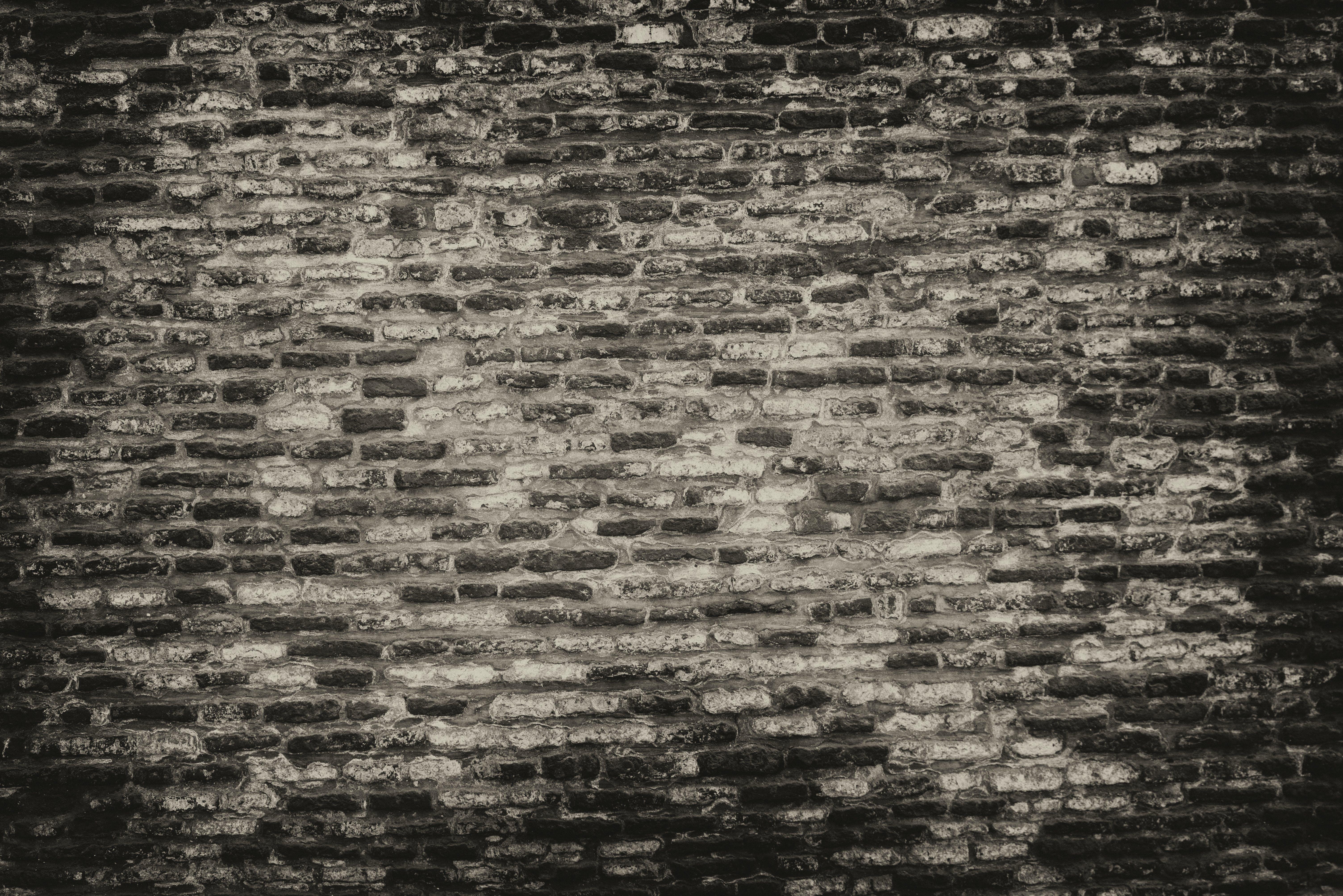 Grayscale Photo of Brickwall