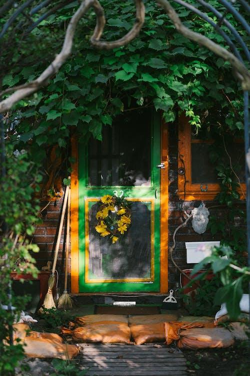 Photo of Door Near Plants