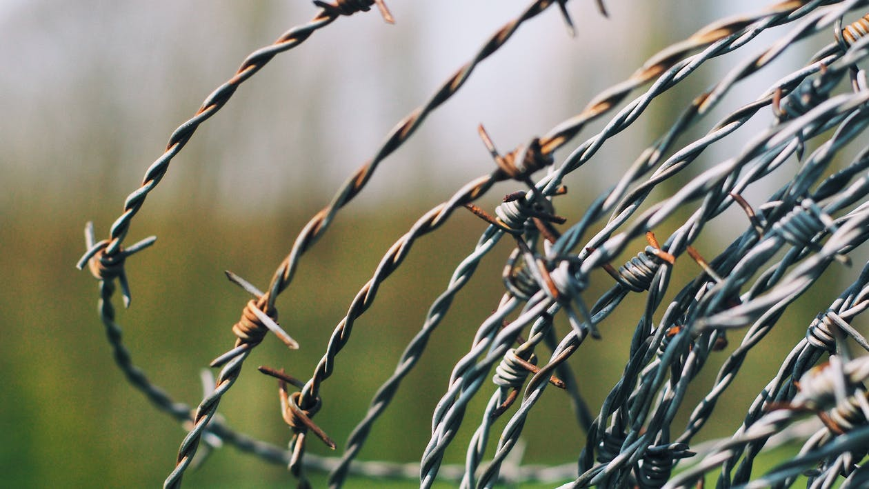 Close-Up Photography of Barbed Wire