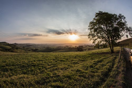 Foto d'estoc gratuïta de camp, capvespre, comarcal, herba