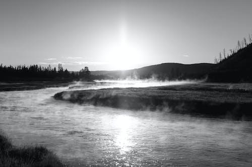 Foto d'estoc gratuïta de aigua, alba, blanc i negre, boira