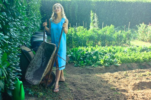 Foto stok gratis cewek, dewasa, kaum wanita, kebun