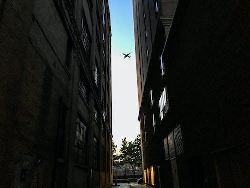 คลังภาพถ่ายฟรี ของ ช่องว่าง, ตึก, ท้องฟ้า, เครื่องบิน