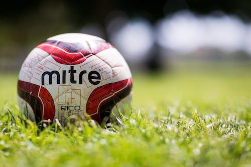 Kostnadsfri bild av boll, fotboll, gräs, makro