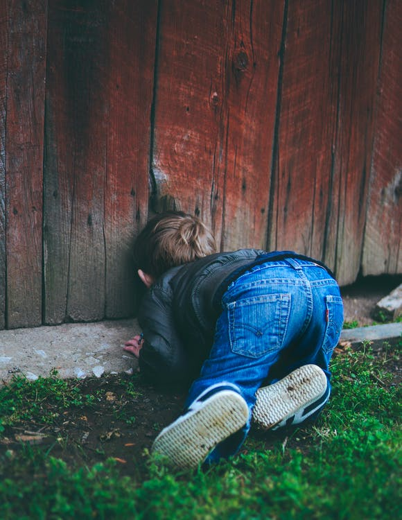 Photo of Boy Peeking on Brown Wooden Fence