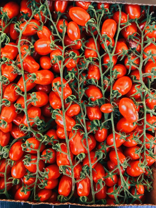 Fotobanka sbezplatnými fotkami na tému čerstvosť, čerstvý, červená, fotografia jedla