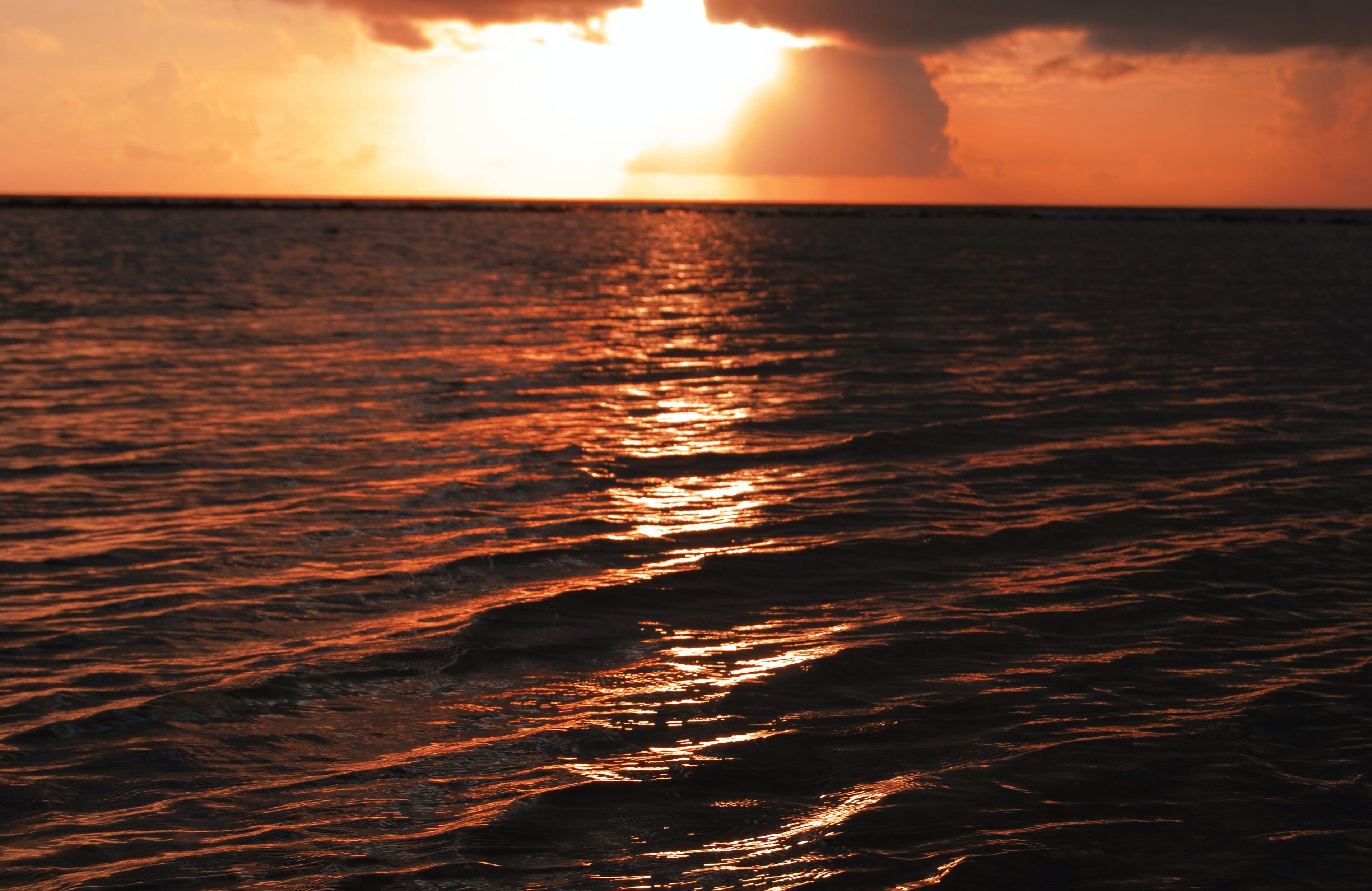Free stock photo of evening sun, filter, golden sunset, nature photography