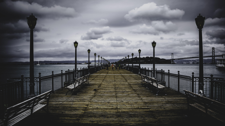 Brown Wooden Bridge Near Body of Water