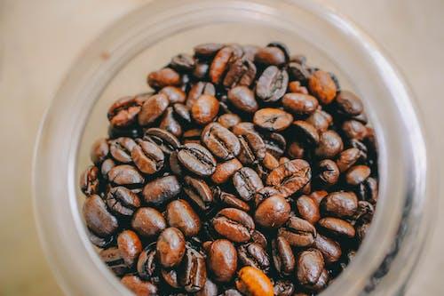 병, 볶은 커피 콩, 원두, 유리병의 무료 스톡 사진