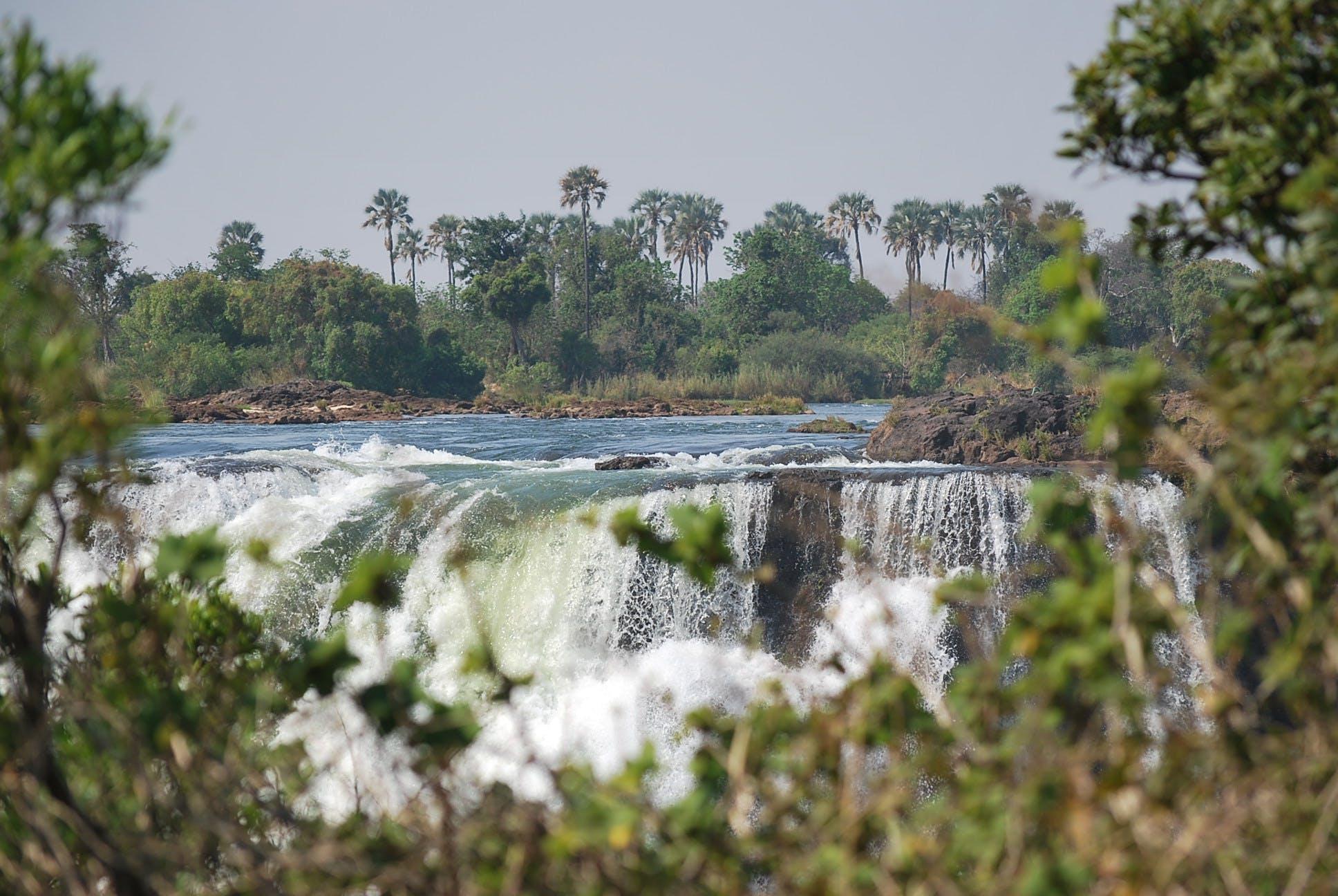 Gratis lagerfoto af afrika, mosi-oa-tunya, palmer, vandfald