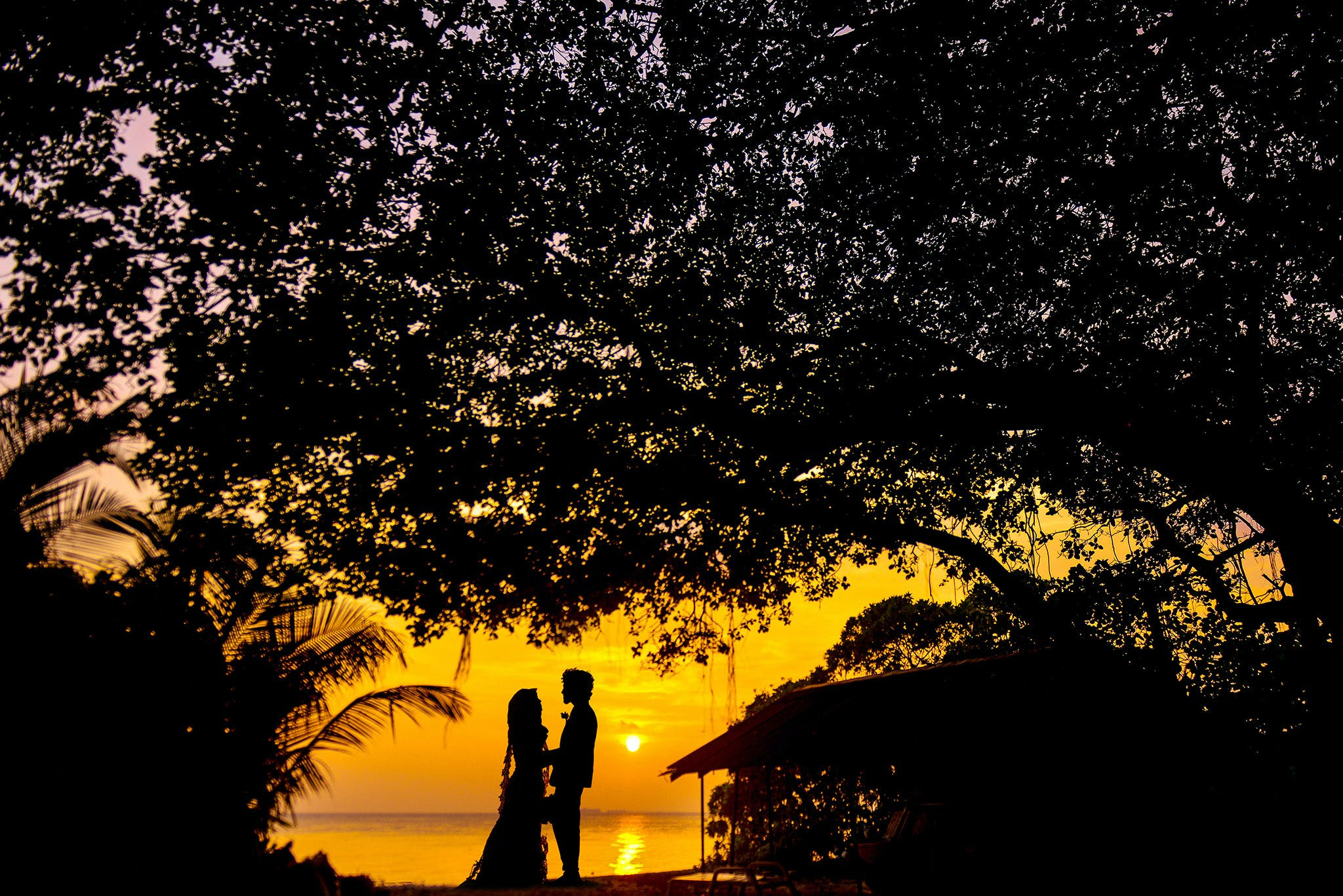 Silhouette Photo of Man and Woman during Sunset