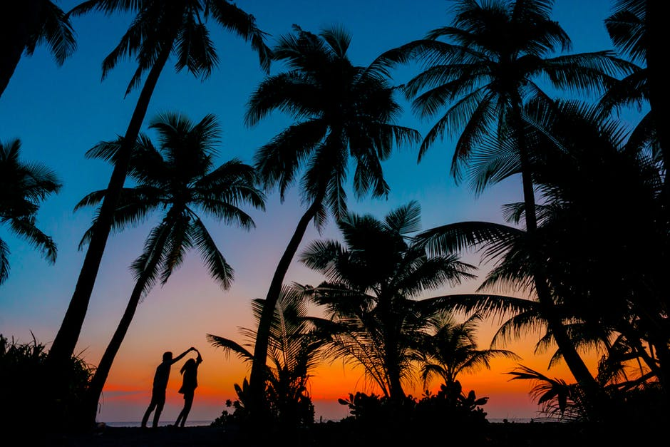 Silhouette photography of man and woman beside trees during sunset