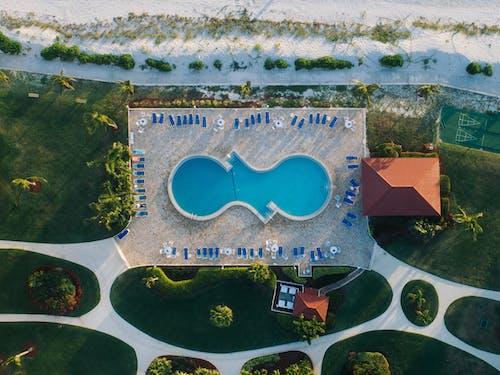 Foto d'estoc gratuïta de aigua, arbre, paisatge, piscina