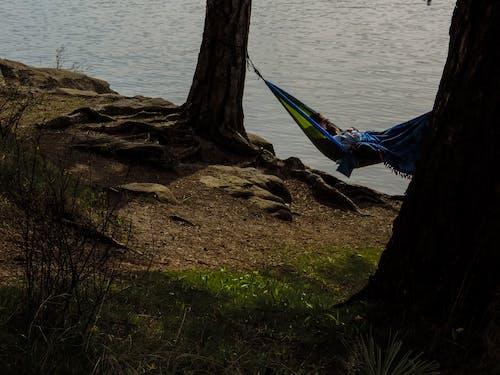 Ingyenes stockfotó alvás, fák, függőágyak, naplemente témában