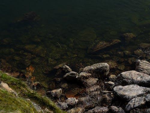 Ingyenes stockfotó sziklák, víz, víz alatti, zöld témában
