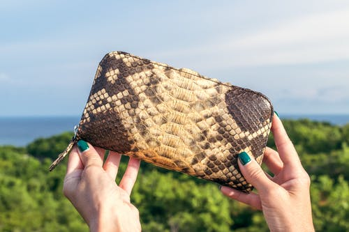 Brown and Black Snakeskin Leather Zip-around Purse