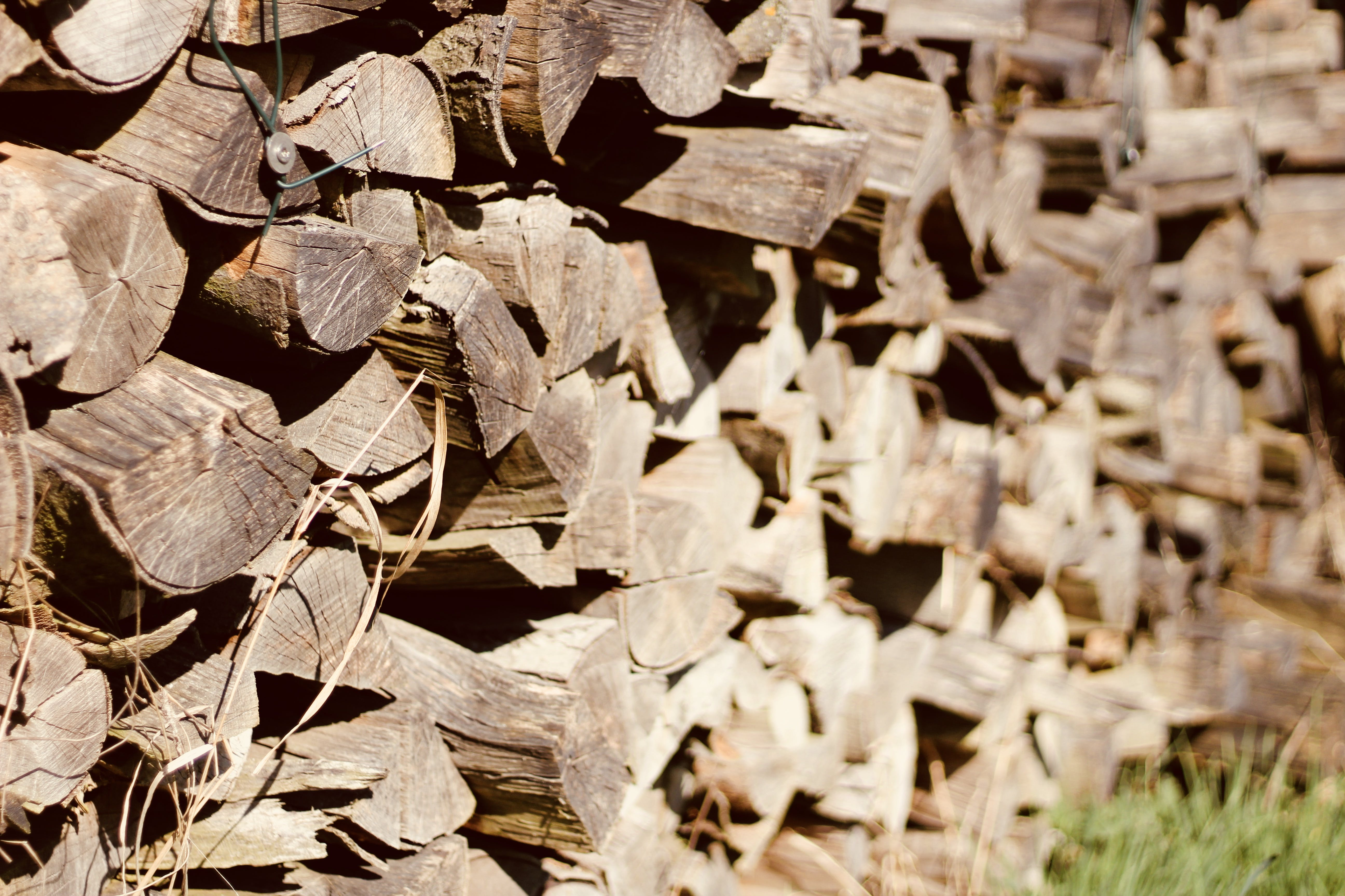 Photo of Piled Firewood