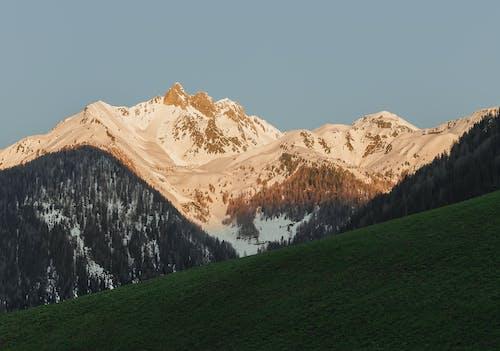 Foto profissional grátis de Alpes, cênico, conífera, luz do dia