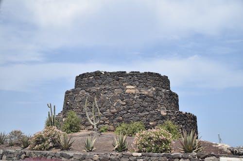 Kostnadsfri bild av fuerteventura