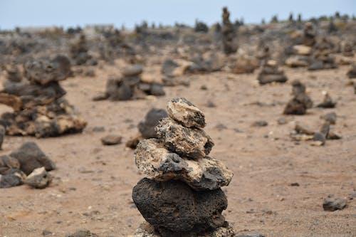 Kostnadsfri bild av fuerteventura, natur