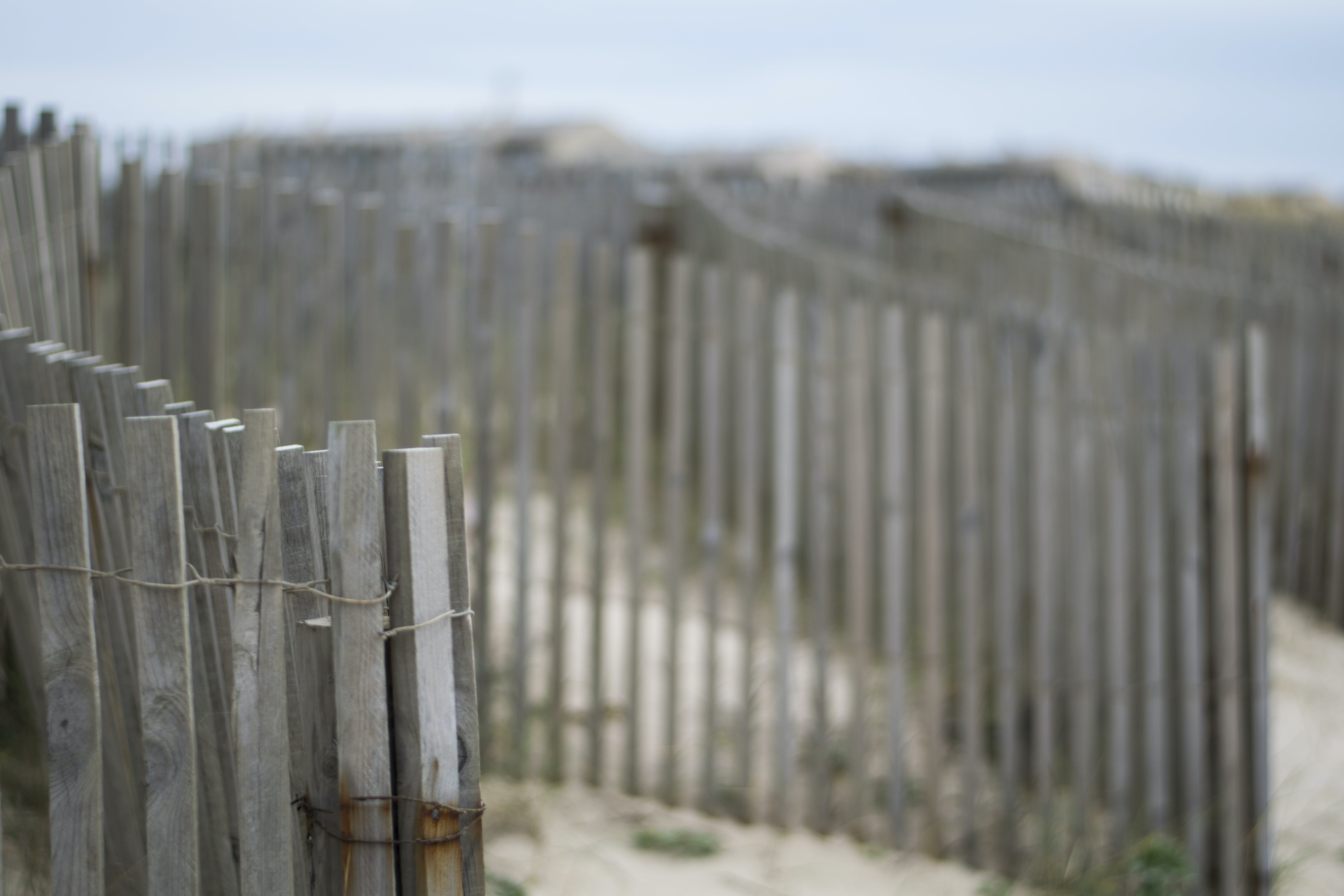 Shallow Focus Photography of Brown Wooden Fence