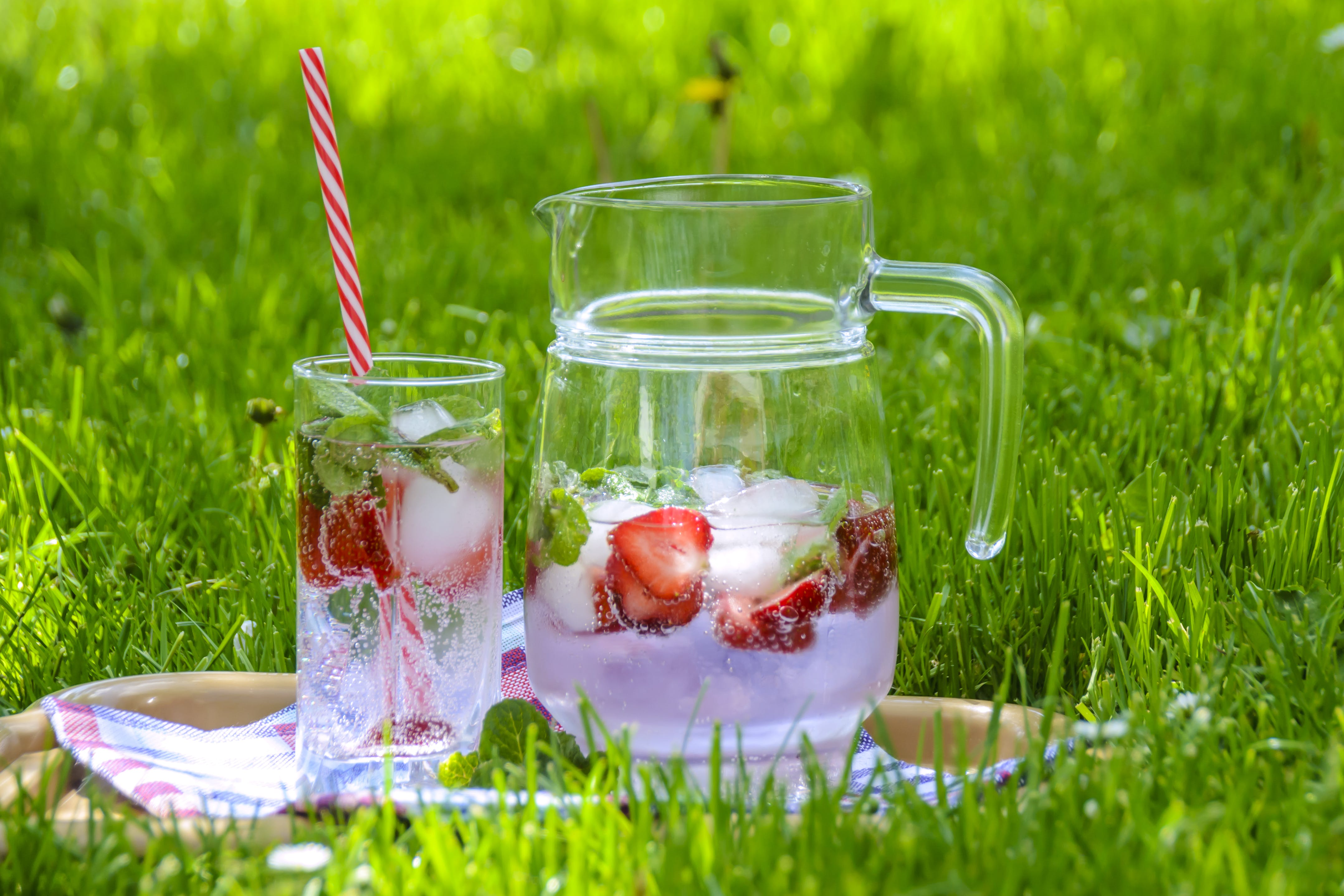 Clear Glass Pitcher With Drinking Cup on Green Grass