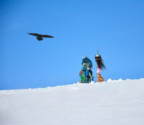 Ilmainen kuvapankkikuva tunnisteilla vuoren huippu ja raven