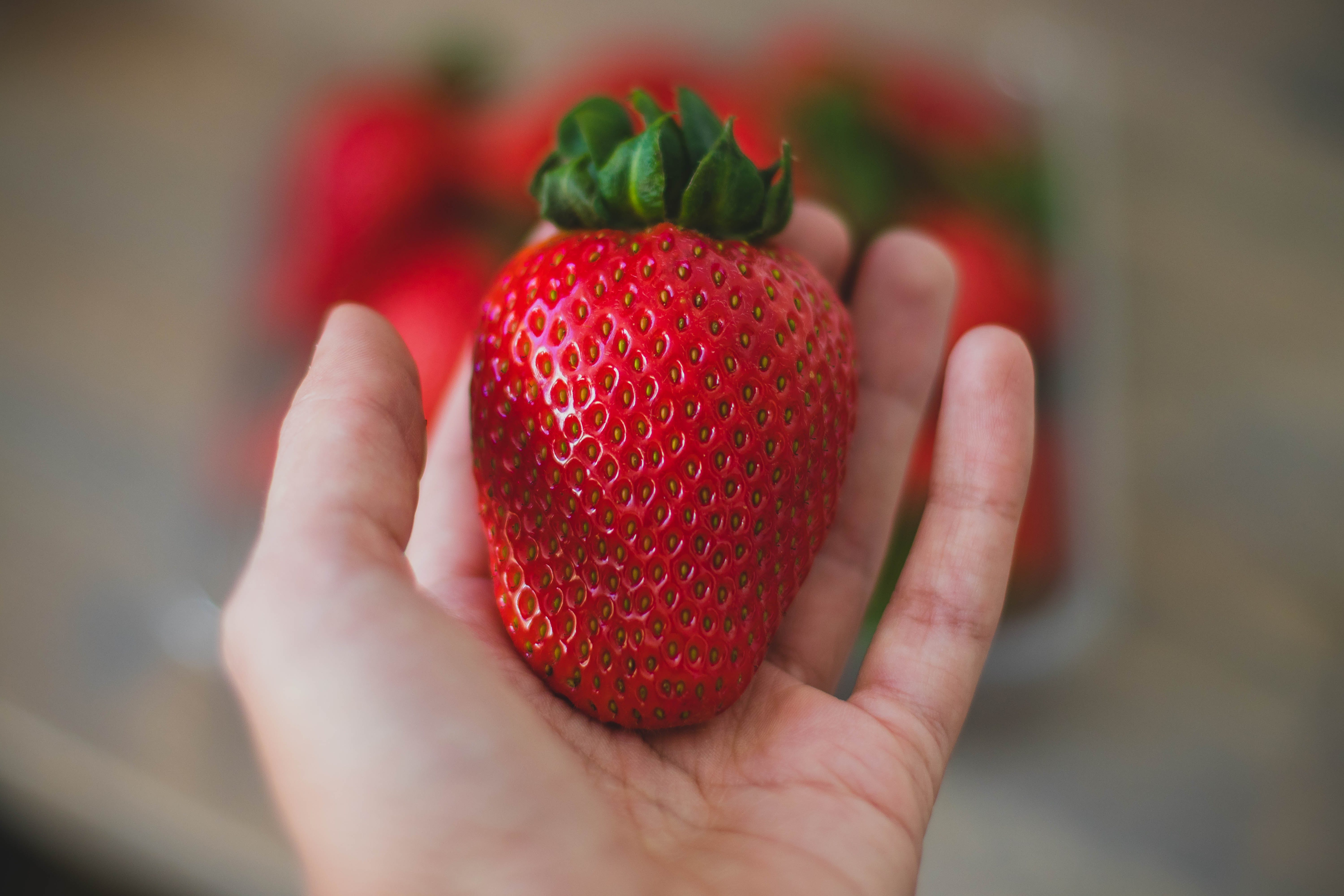 Close-Up Photography of Strawberry