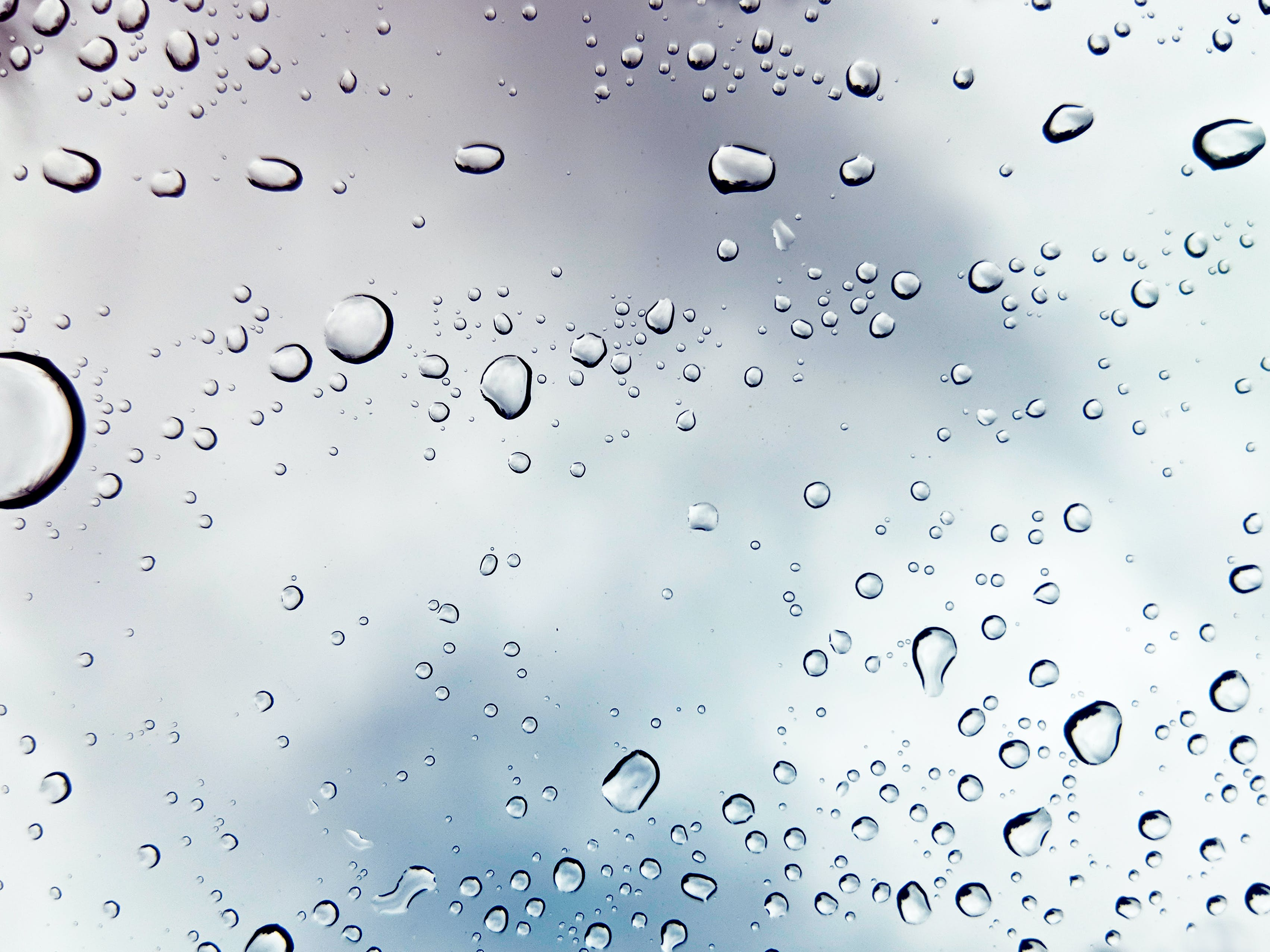 Macro Shot Photography of Water Drops