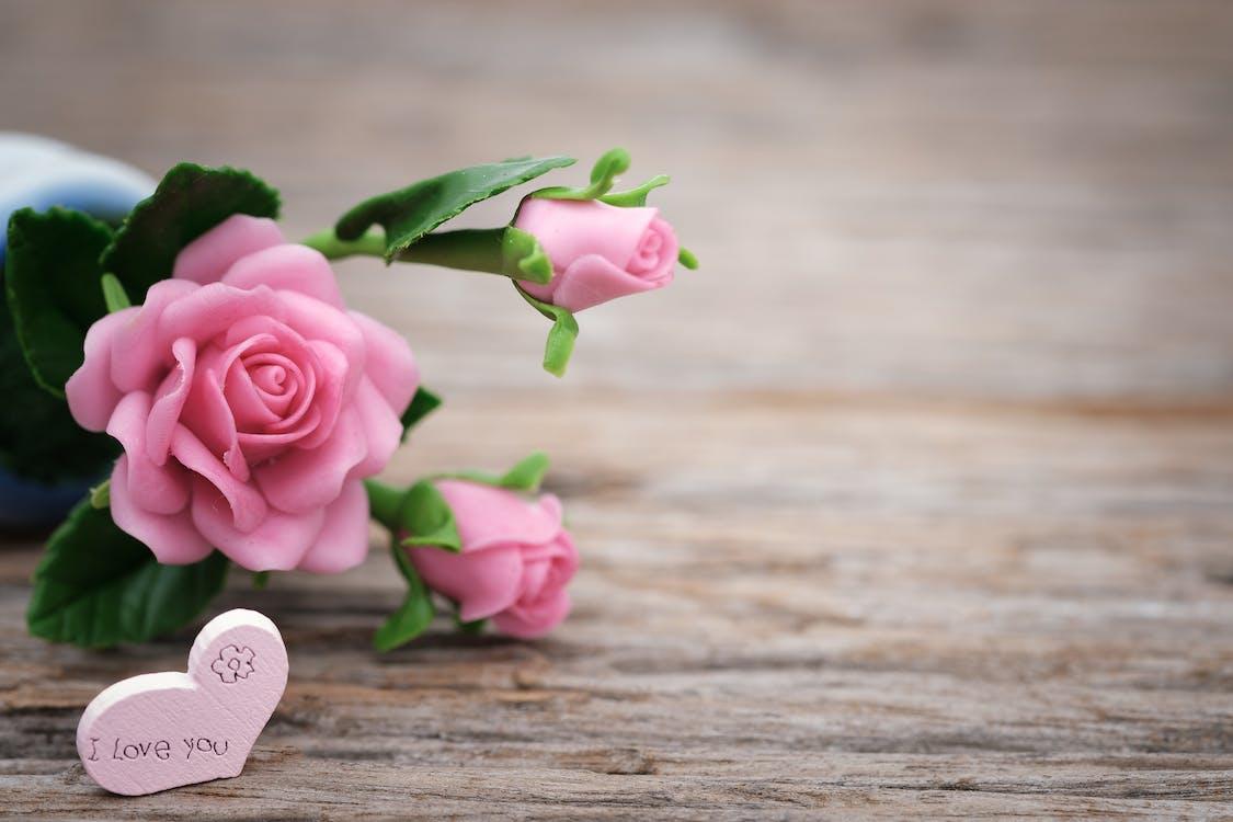 amor, corazón, día de la Madre