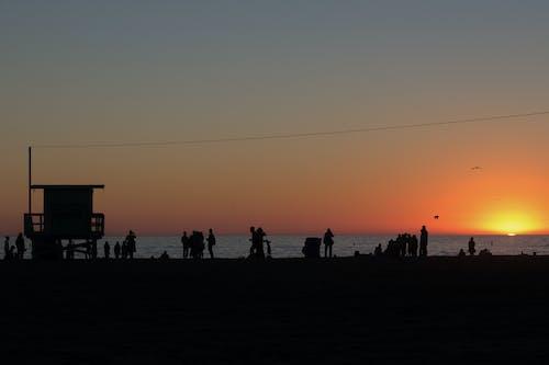 Foto d'estoc gratuïta de alba, capvespre, cel, gent
