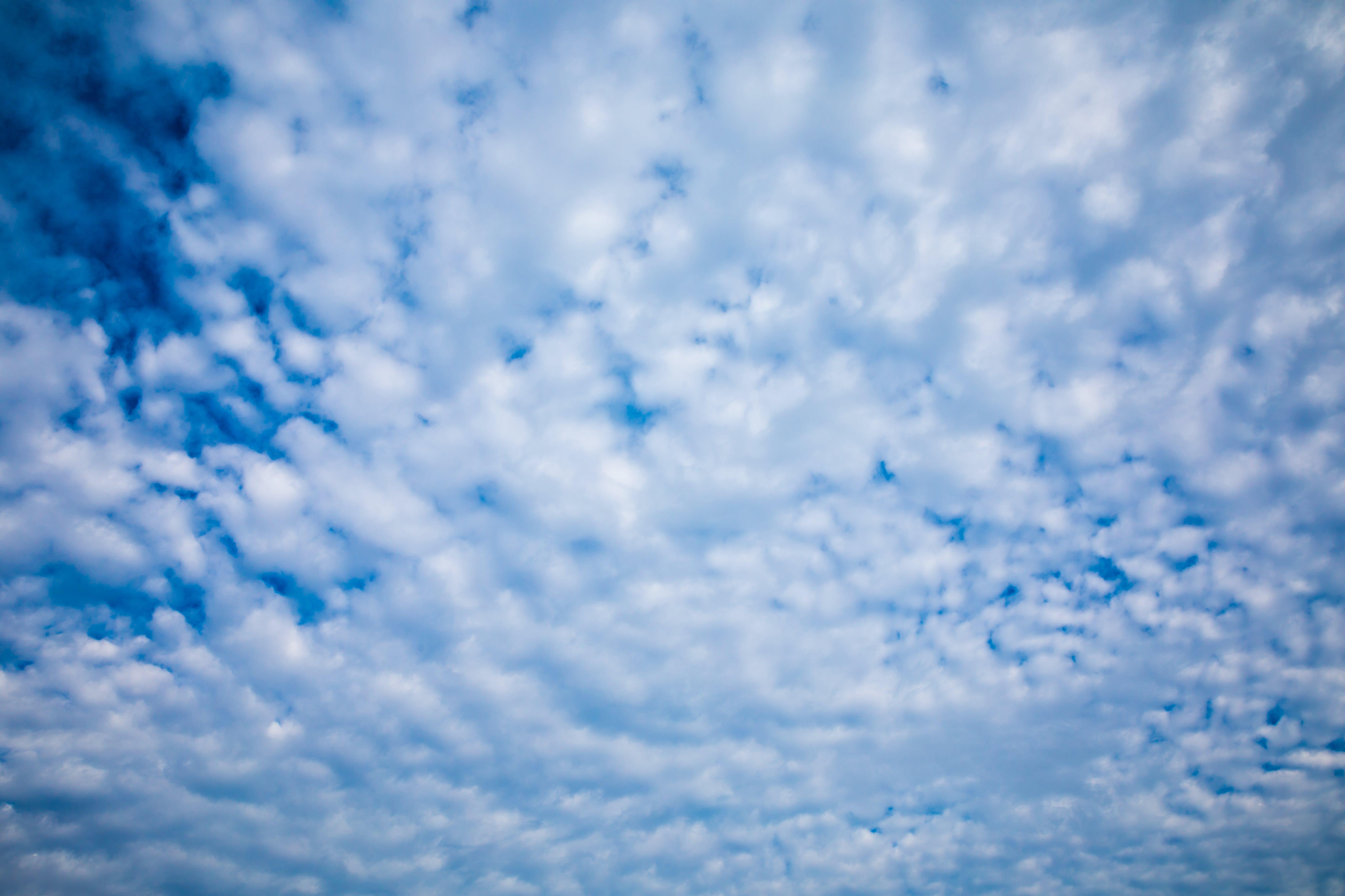 Free stock photo of angle, background, beautiful, beauty