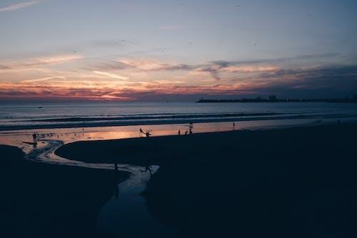 Fotos de stock gratuitas de agua, costa, hacer surf, mar
