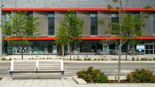 Foto profissional grátis de arquitetônico, arquitetura, arquitetura contemporânea, árvores