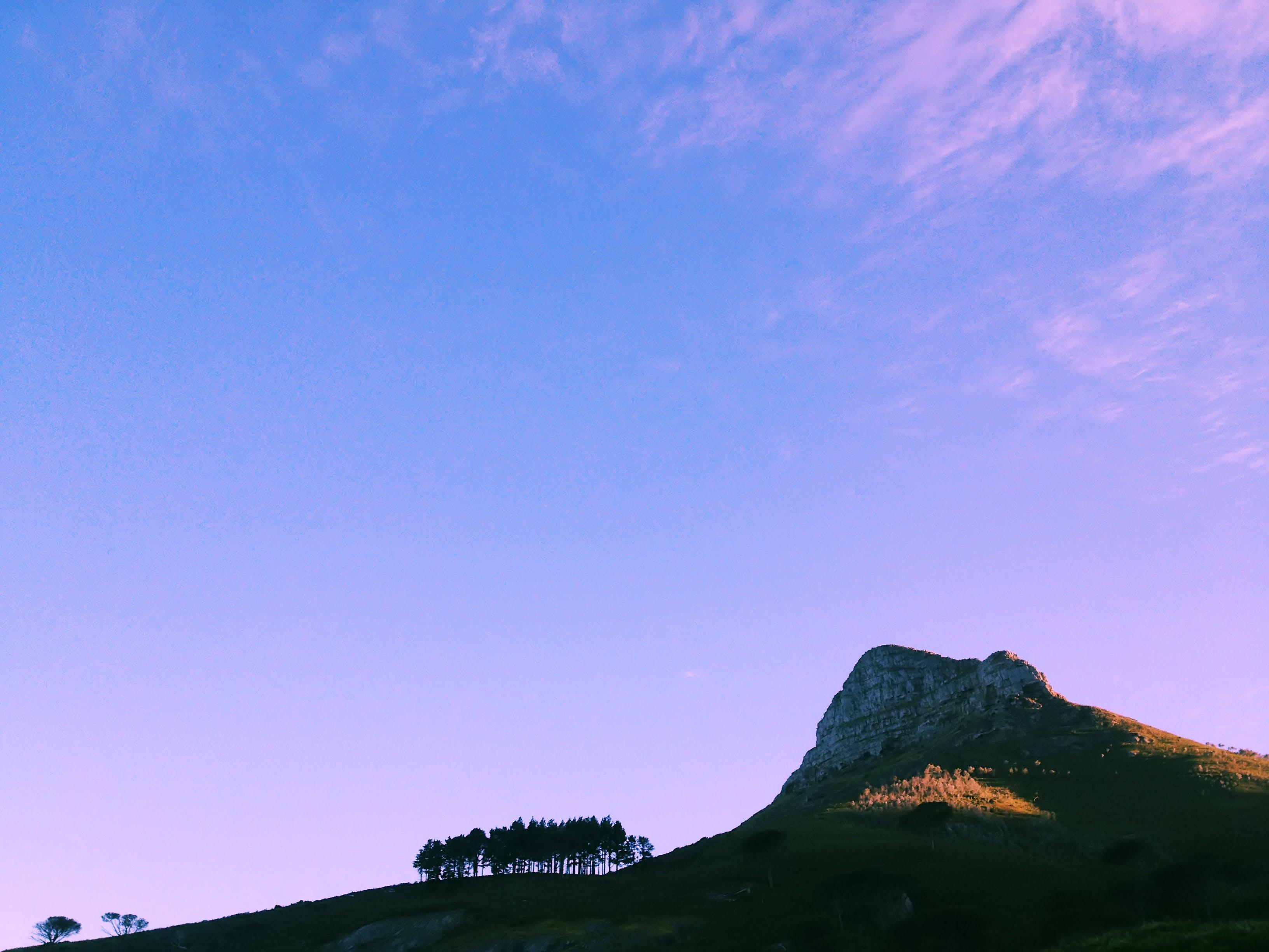 Fotos de stock gratuitas de arboles, colina, ligero, luz de día