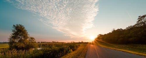 Kostnadsfri bild av asfalt, fält, gräs, gryning