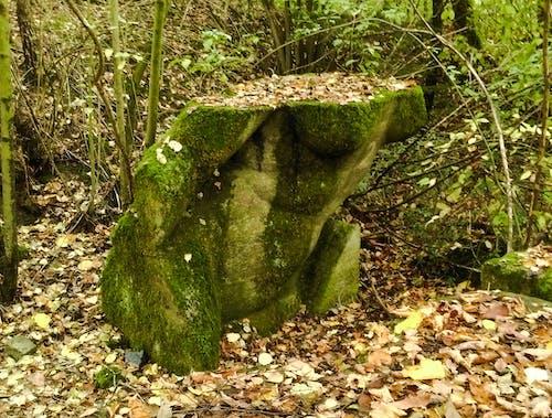 Ingyenes stockfotó elhagyatott, elhagyott szobor, elveszett helyek, erdő témában