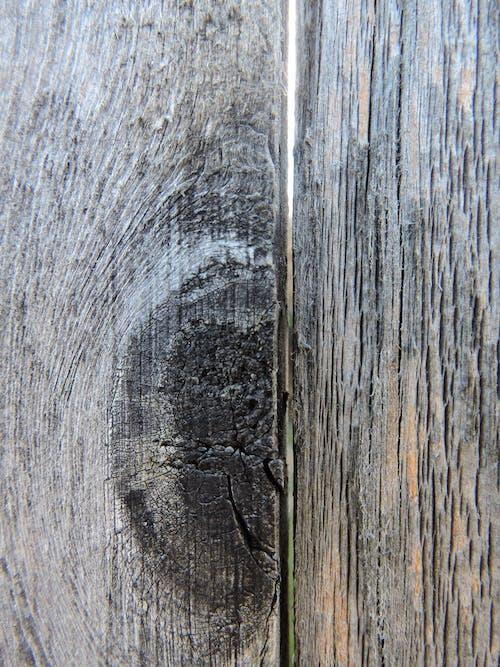 Fotobanka sbezplatnými fotkami na tému plot zdreva