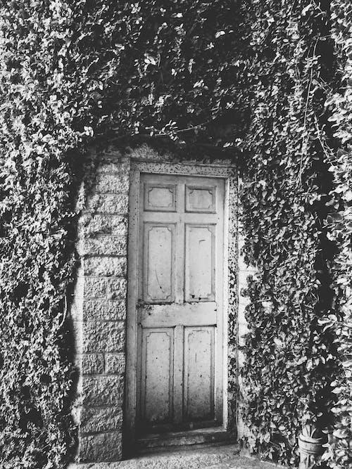 Free stock photo of door, palace