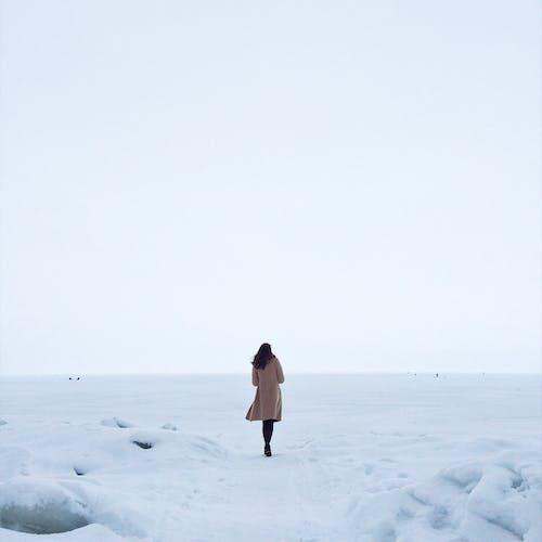 Безкоштовне стокове фото на тему «визирає, дивиться, жінка, заморожений»