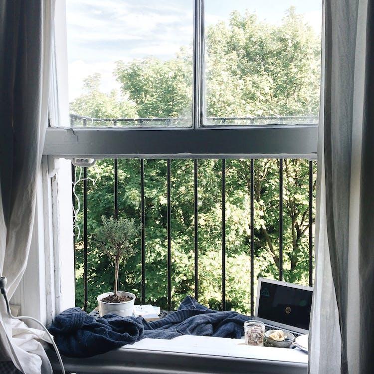 Open White Wooden Framed Clear Glass Window