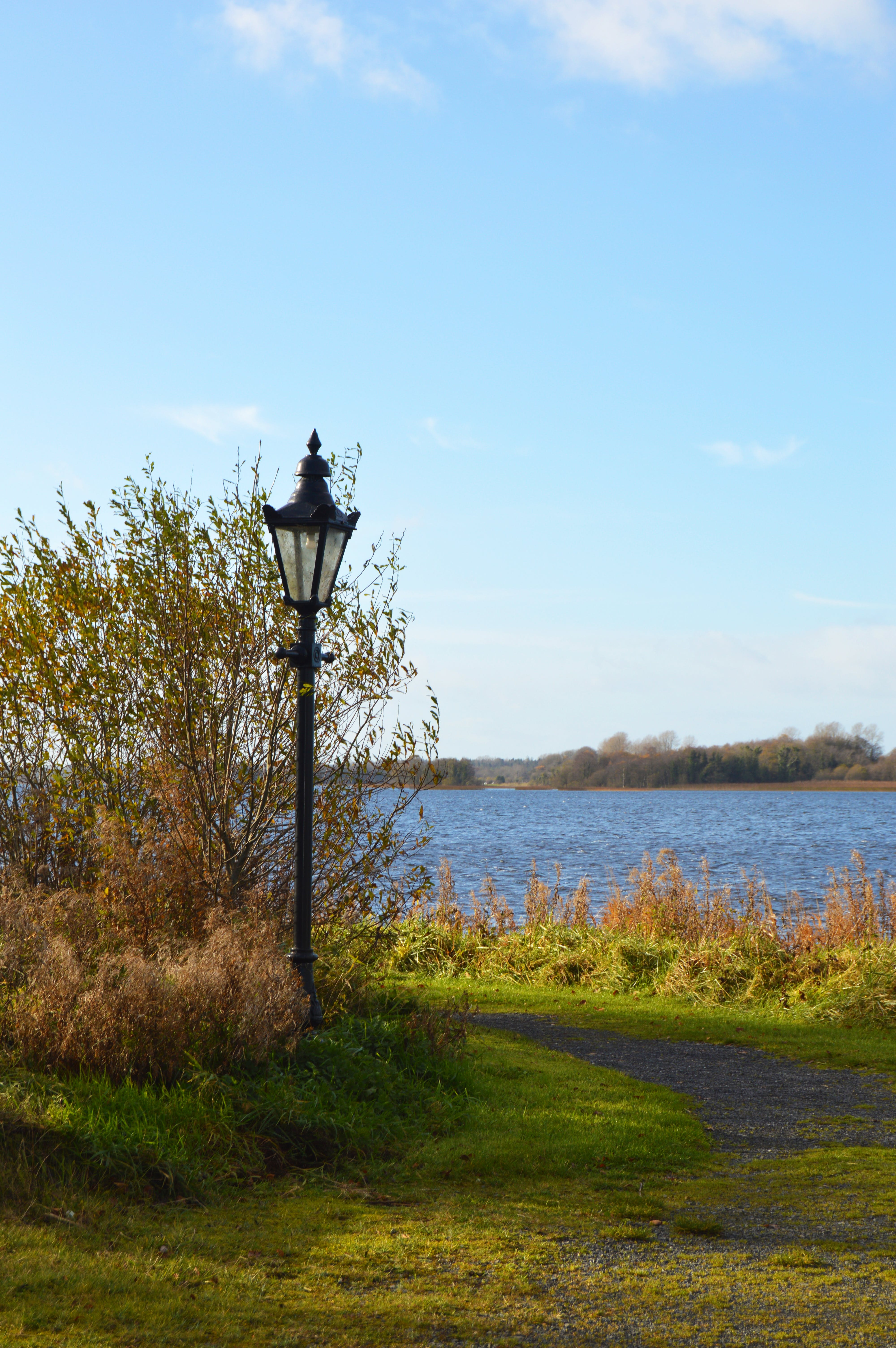 Free stock photo of lake, lampost, nature, sky