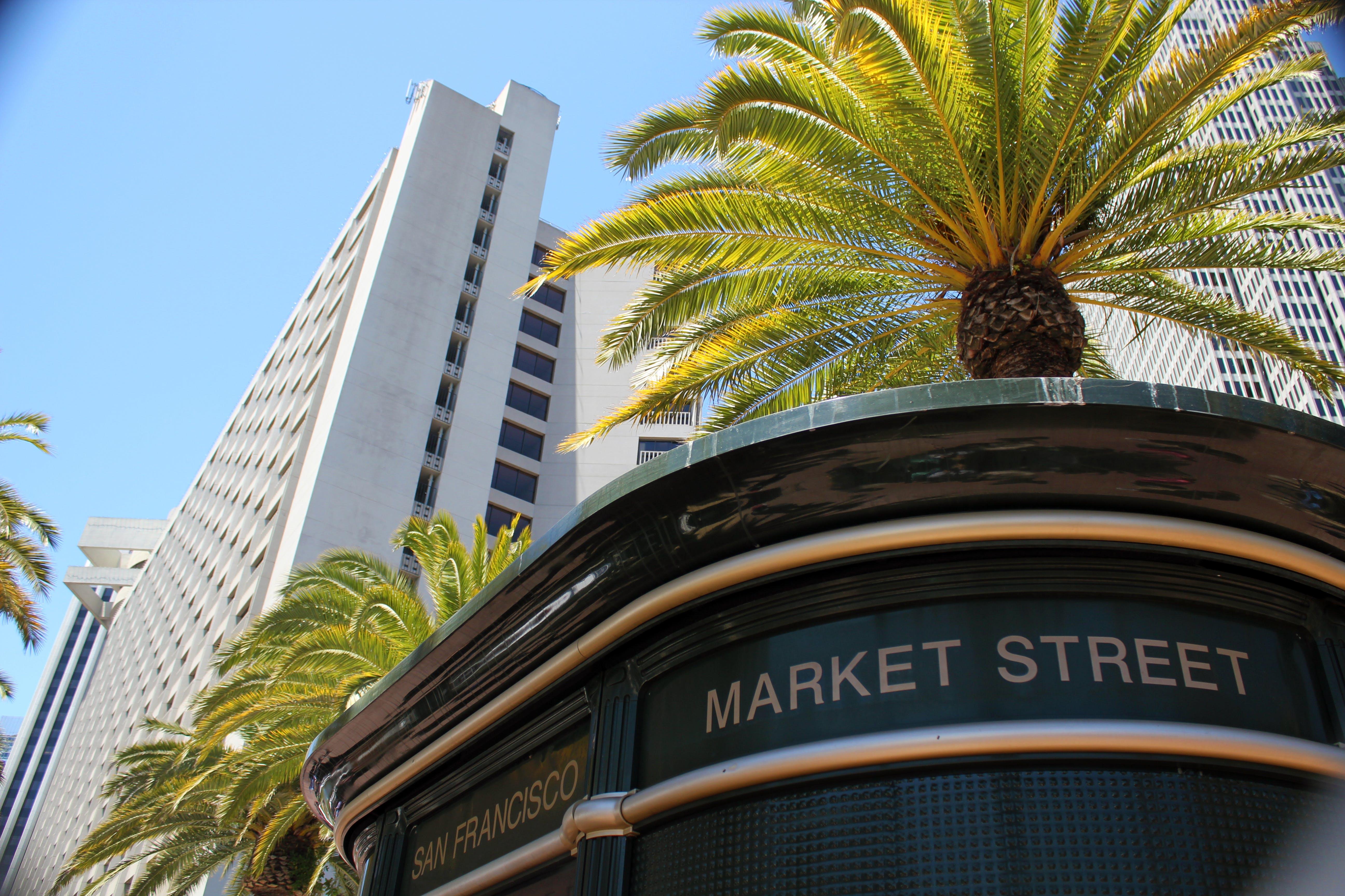 Free stock photo of market street