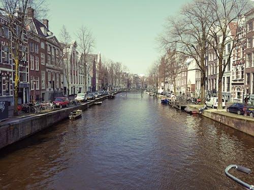 Imagine de stoc gratuită din Amsterdam, arbori, automobil, barcă