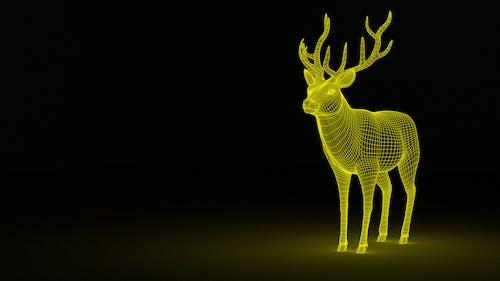 Free stock photo of 3D Dear, dear, light